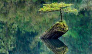 Legile economiei din planul spiritual Legile economiei din planul spiritual