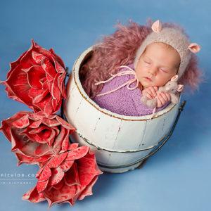 sedinte foto de nou nascut